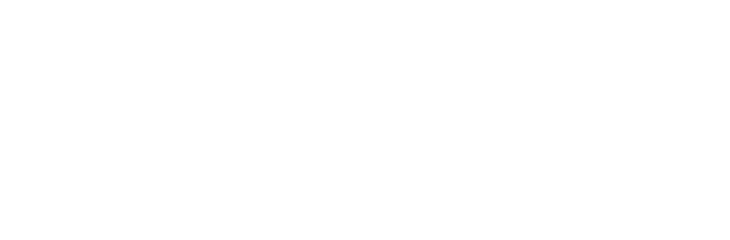PT. Rinjani Warna Karya